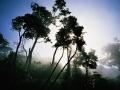 costa-rica-046-corcovado-np